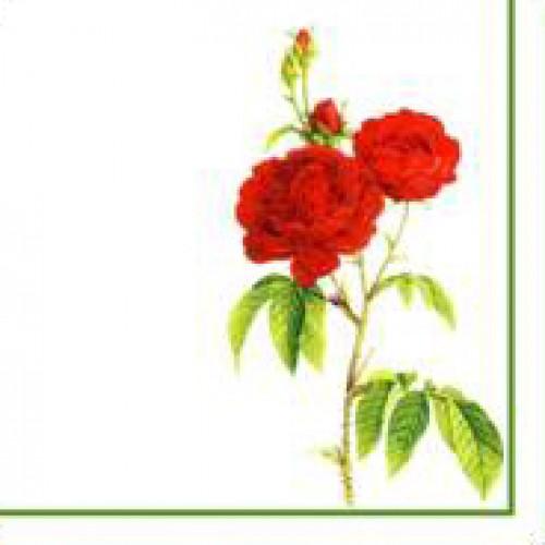 Салфетки бумажные Цветы винтаж
